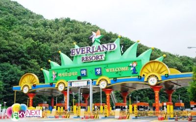 Review Công Viên EverLand Hàn Quốc