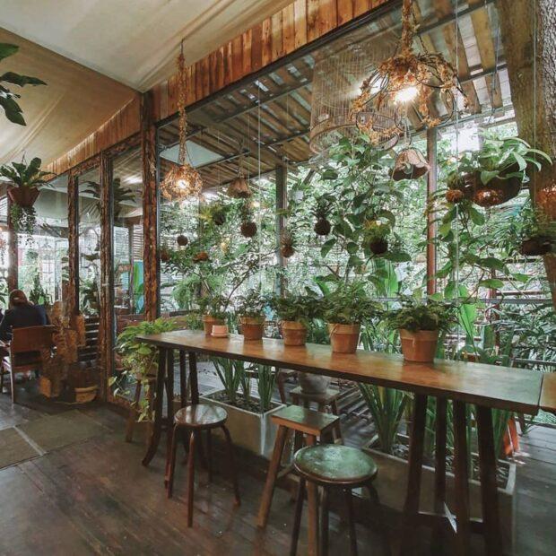 Saigon cafe cu tren cay 01